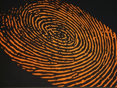 Fingerprint400